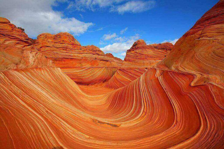 Wave Arizona