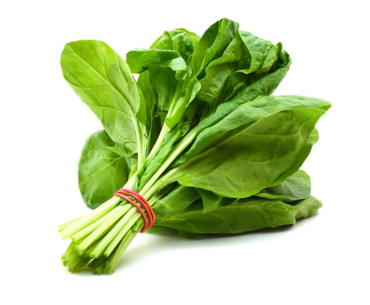 Food to eat for living more - spinach