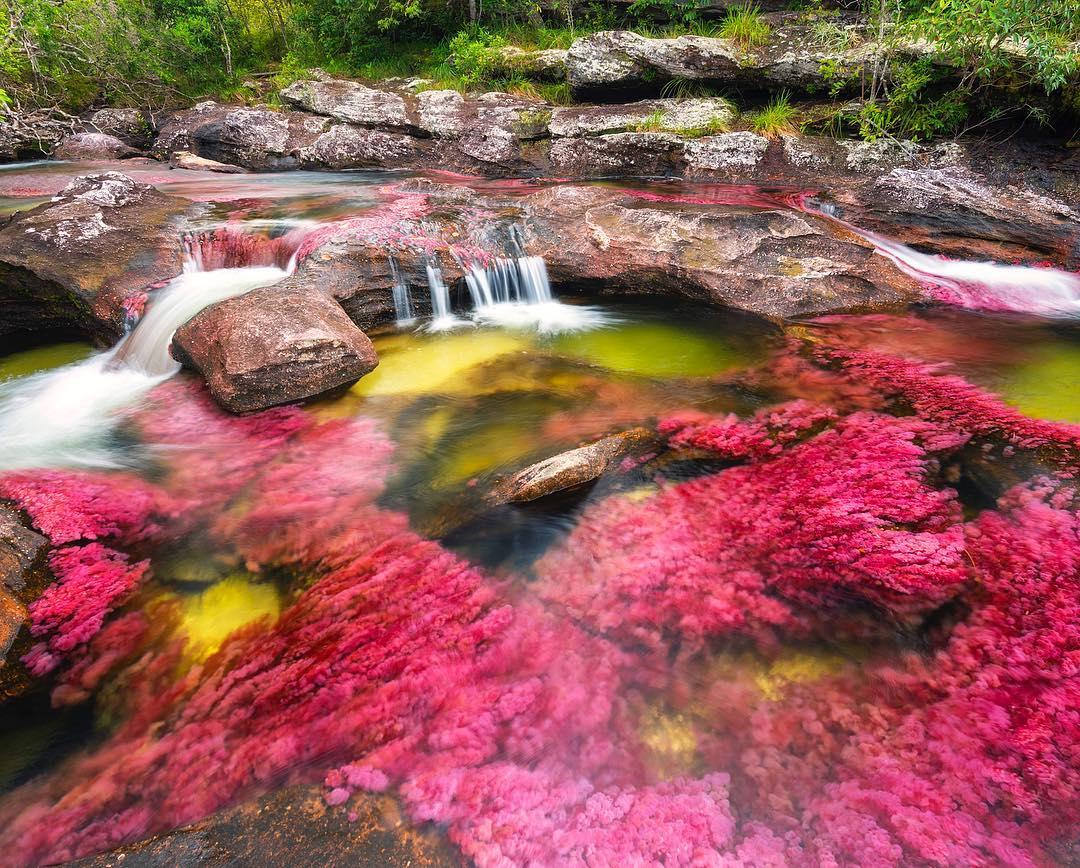 Az ötszínű folyó - Kolumbia
